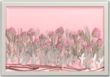 背景ピンク額